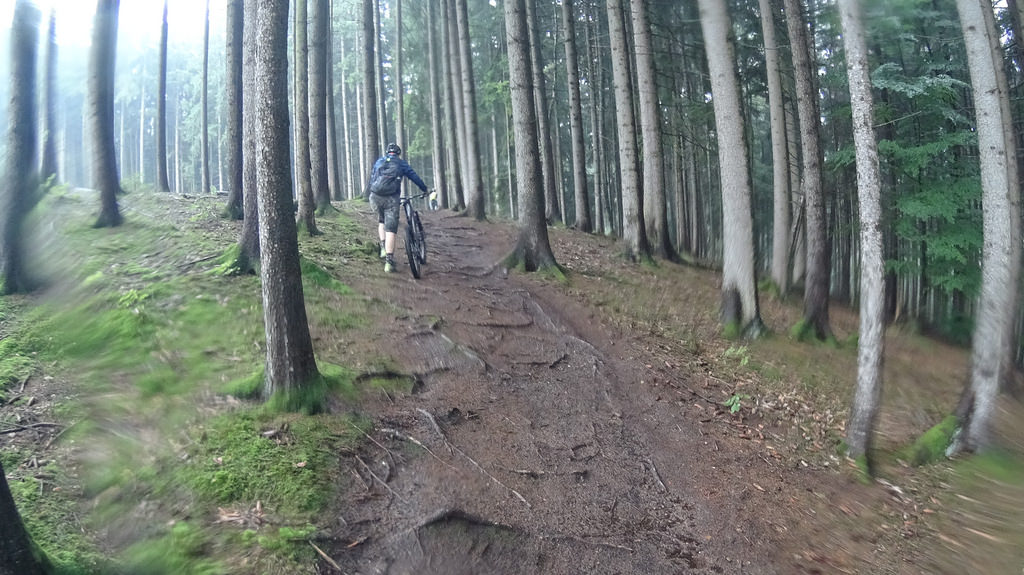 [ Dat Slippery Roots! ] Near Augsburg MTB Ride